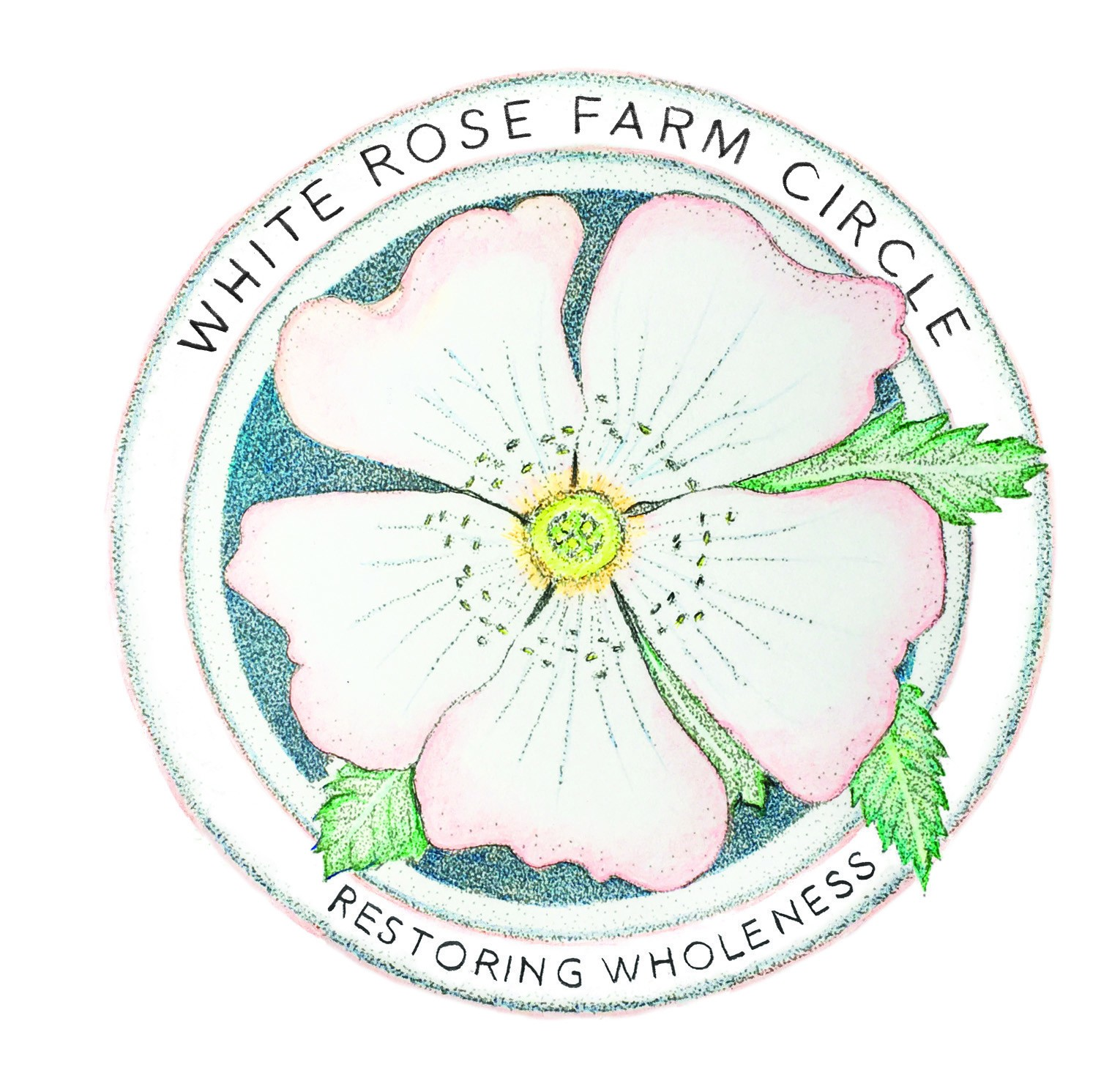 White rose farm white rose farm circle inc fosters community to empower people to work together to restore health to the land the natural world and each other mightylinksfo